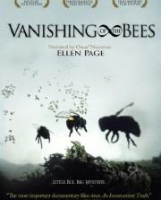 Vanishing-of-the-Bees-0