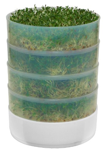 Victorio-VKP1014-4-Tray-Kitchen-Seed-Sprouter-0