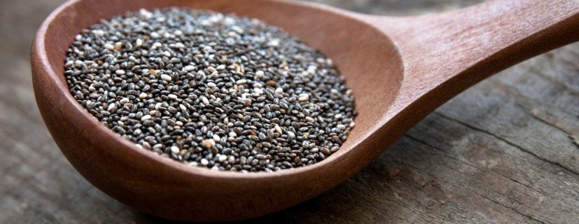 uses-for-chia-seeds